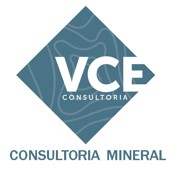 VCE Consultoria
